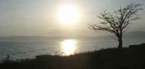Lakey Sore
