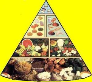 Segitiga Makanan