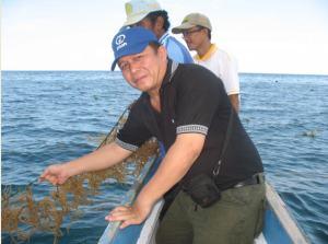 Calon Juragan Rumput Laut