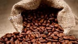 biji-kopi sdh di sangrai